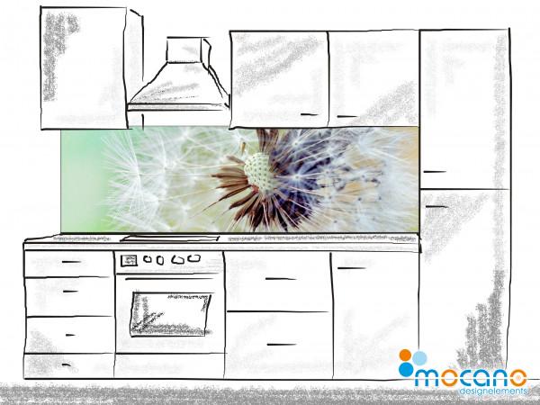 Küchenrückwand Pusteblume 200x60cm - Wohnbeispiel