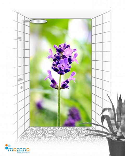 Lavendel 120x210cm Duschrückwand - Wohnbeispiel