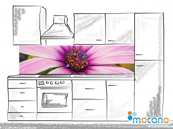 Küchenrückwand Flower Melody 200x50cm - Wohnbeispiel