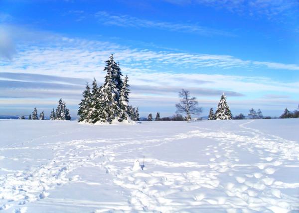 Winterday 147 Fototapete