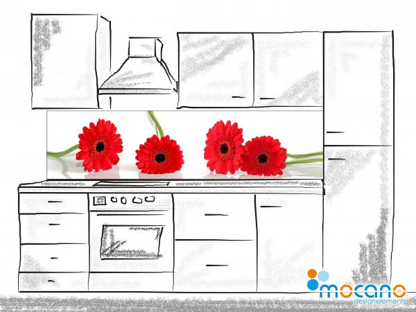 Küchenrückwand Rote Margeriten 200x50cm - Wohnbeispiel