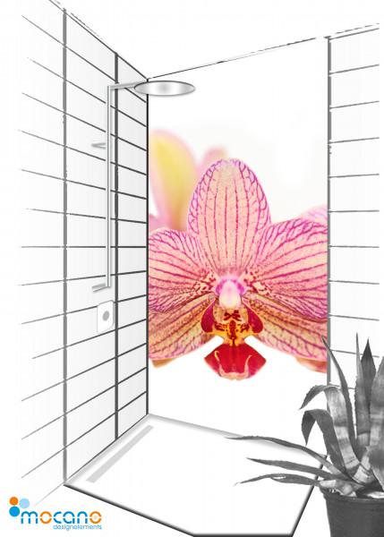 Duschrückwand Orchidee 90x210cm - Wohnbeispiel