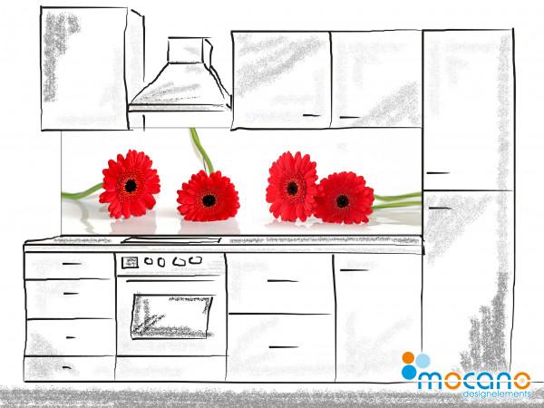Küchenrückwand Rote Margeriten - 200x60cm Wohnbeispiel