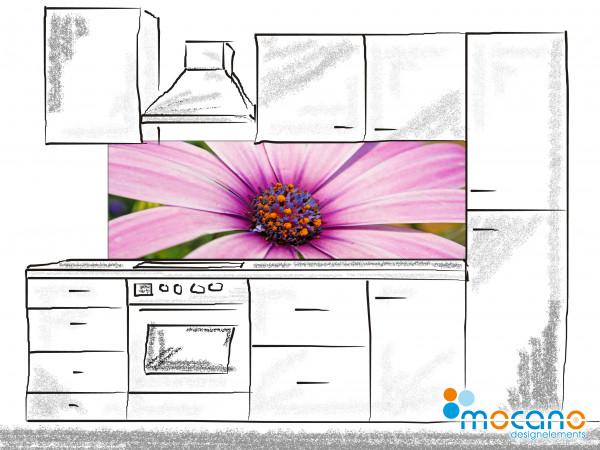 Küchenrückwand Flower Melody 180x60cm - Wohnbeispiel