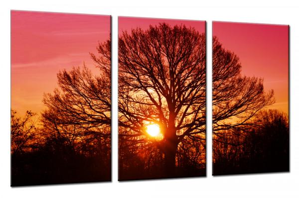 Tree Of Life 2 Mehrteiliges Leinwandbild Mehrteilige