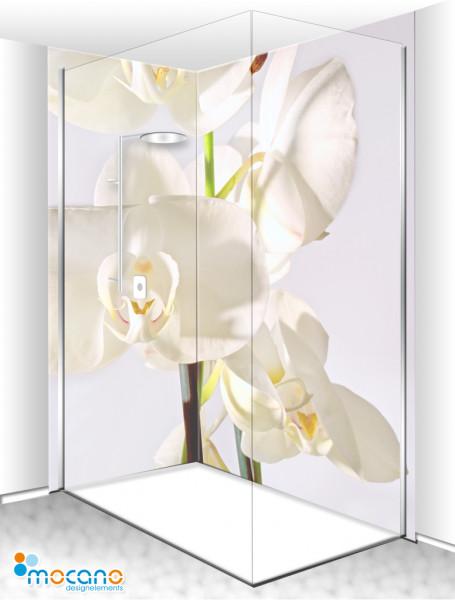 Duschrückwand Eck-Set White Orchideen Series 9 200x210cm - Wohnbeispiel