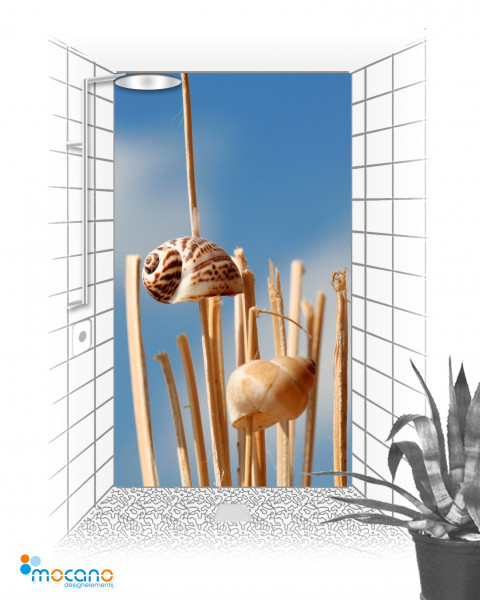 Duschrückwand Shell Sky 120x210cm - Wohnbeispiel