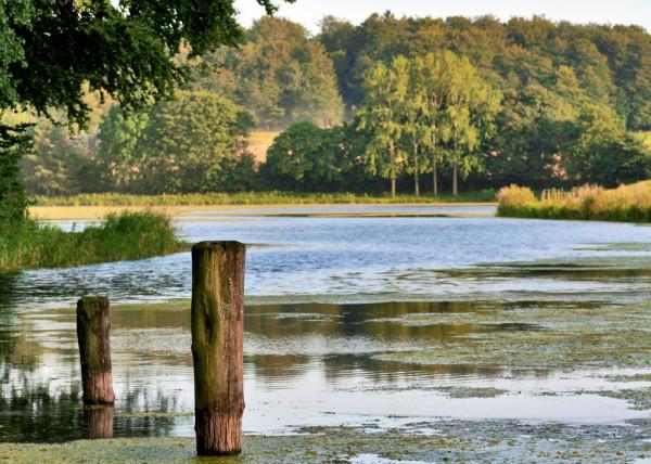 Seelandschaft II - 179 Fototapete