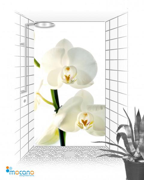 Duschrückwand Weiße Orchideen 8 120x210cm - Wohnbeispiel