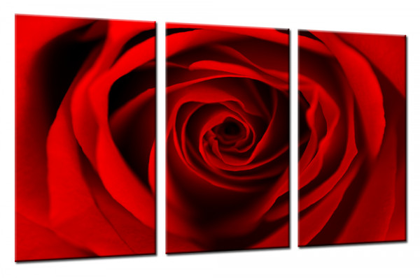 Red Dreaming Rose 150 - Mehrteiliges Leinwandbild
