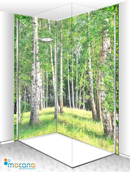 Duschrückwand Eck-Set Birkenwald 5 200x210cm - Wohnbeispiel