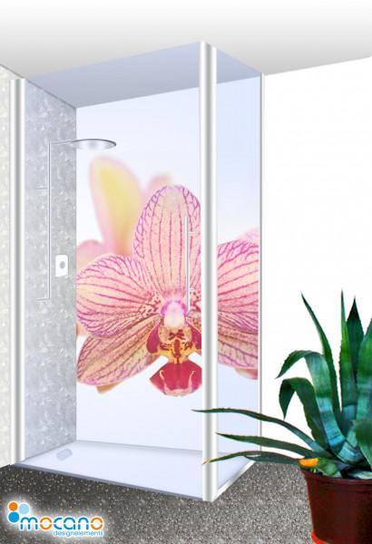 Duschrückwand - Orchidee Wohnbeispiel