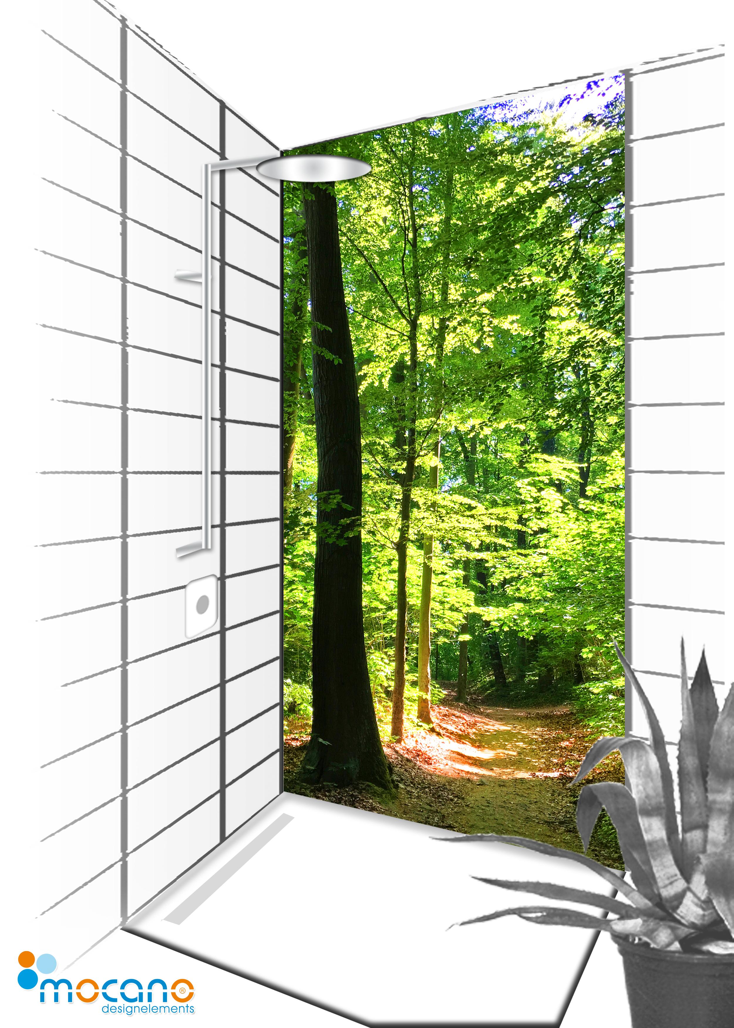 lichtung lichtdurchflutet duschr ckwand 90x210cm 90x210cm motive duschr ckwand. Black Bedroom Furniture Sets. Home Design Ideas