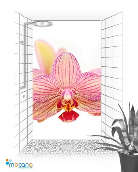 Duschrückwand Orchidee 120x210cm - Wohnbeispiel