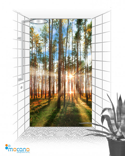 Wald im Gegenlicht 2 - 120x210cm Duschrückwand - Wohnbeispiel