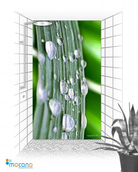 Blatt mit Wassertropfen 120x210cm Duschrückwand - Wohnbeispiel