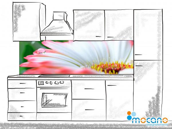 Küchenrückwand Wassertropfen auf Gerbera 200x60cm - Wohnbeispiel