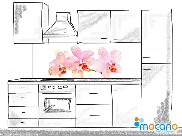 Küchenrückwand Orchidee 180x60cm - Wohnbeispiel
